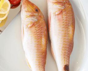 Balık Alerjisi Nedir Küçük