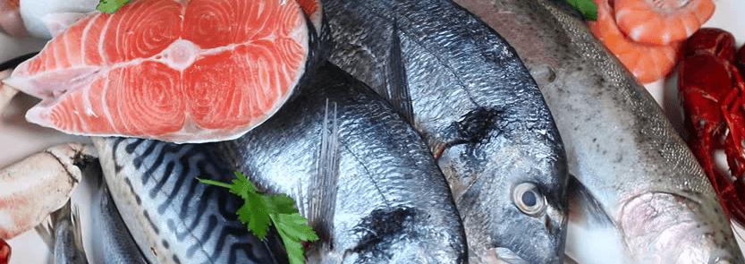Balık Türlerine Alerji